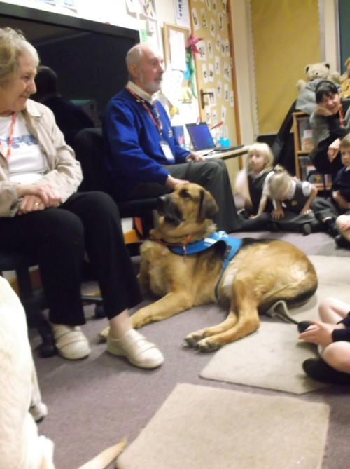 Adam and the Guide Dog Team visiting the Reception Class